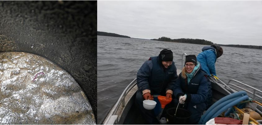Left: the little red one is our catch, right: Researchers are warm and happy with their seven layers of clothing.