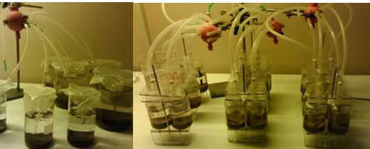 Our old, rather shaky and bulky experiment system (left), and new, compact setup (right) developed by Risto.