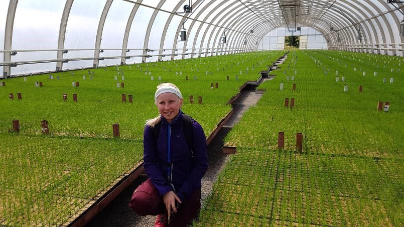 Girl inside a greenhouse full of saplings.
