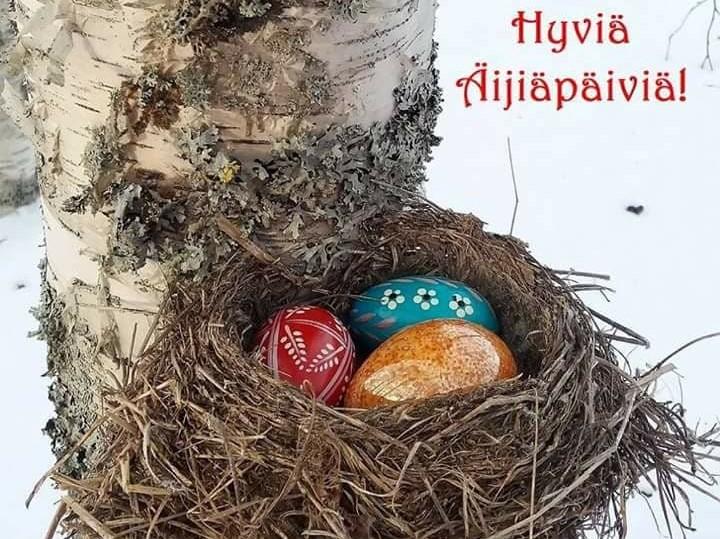 Pääsiäismunia linnunpesässä