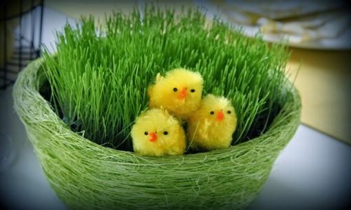 Hyvää Pääsiäistä! – Happy Easter!