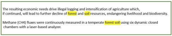 Sanati erillään ja yhdessä eri käsitteissä: forest and soil resources, temperate forest soil.