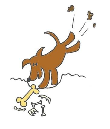 Koira etsii ja kaivaa luita maasta.