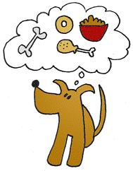 Koira ajattelee ruokaa.