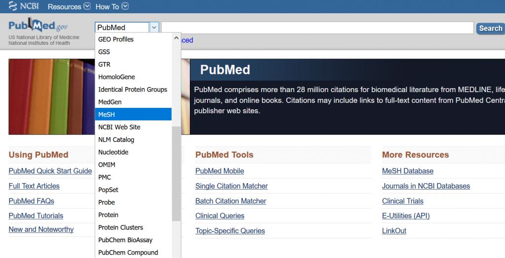Linkki MeSH-asiasanastoon PubMed-tietokannan käyttöliittymässä.