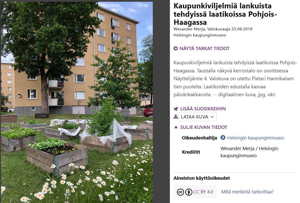 Finnasta haettu esimerkkikuva kaupunkipuutarhasta. Kuvan tietue on kuvailtu ja sille on annettu CC-lisenssiksi CC BY 4.0.